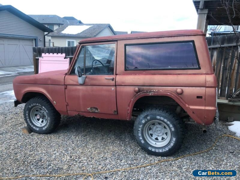 Ford: Bronco for Sale